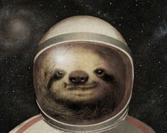 Space Sloth Preview. The Fan Brothers Surreal Illustrations. By The Fan Brothers.