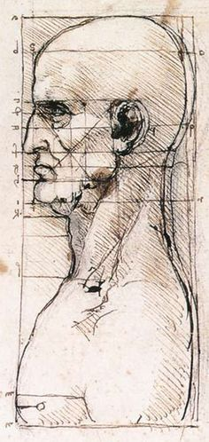 da Vinci's study proportions and the golden ratio