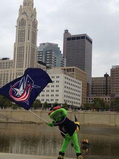 Carry the Flag Stinger!