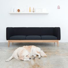 decovry.com+-+Branca+Lisboa+|+Contemporary+Sofa+Design