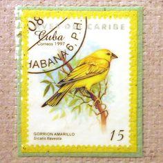Bird Postage Stamp