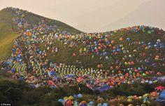 Festiwal kempingowy.  #mintume #eco