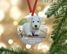 Personalized pet memorial ornament. Made from durable wood that wont crack or peel.  Each ornament comes ready to hang with a red ribbon hanger. FREE SHIPPING  ------------------------------- ORDER PROCESS -------------------------------  1. Select quantity 2. ADD YOUR PERSONALIZATION 3. Click ADD