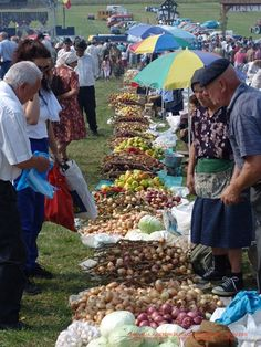 Târgul Cepelor (The Onion Fair) – Asuaju de Sus