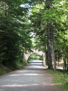 Carriage Trail, Acadia National Park, Maine