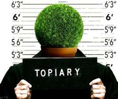 Topiary attacker goes to jail