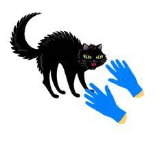 Geen katje om zonder handschoenen aan te pakken --geen gemakkelijk persoon. Proverbs Quotes, Samana, Dutch Quotes, Moose Art, School, Holland, Om, Tools, Sayings