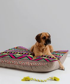 Loving this Bianca Green Overdose Pattern Pet Bed on #zulily! #zulilyfinds