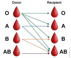 Donate blood and you get a card with your own blood type to carry for any…