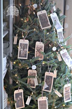 A Year of Memories Tree:  Tags w/ Photos, Small Flashcards w/ Words, Small Tags w/ Words, Small Clothespins--All about the Year in Fun, Family, & Special Moments