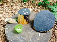 "Chalk board tree stumps.. from Nature to Nurture ("",)"