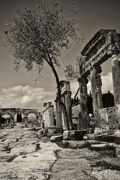 The main Roman road at Hierapolis, Turkey. Picture by Hecktic Travels.