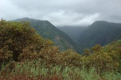 Iao Valley - Maui Maui, Places Ive Been, Beautiful Places, Mountains, Nature, Travel, Voyage, Viajes, Traveling