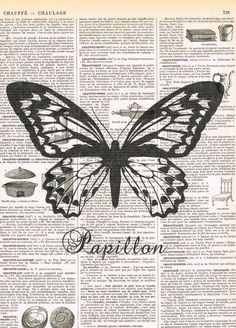 Antique Book PagesButterfly Papillon Insect  by studioflowerpower, $8.50