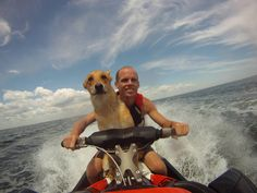 GoPro Photo Of The Day | It's a dog's life!