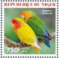Níger 2014 -  El Inseparable de Namibia. Es nativo de las regiones áridas del suroeste de África, como el desierto del Namib