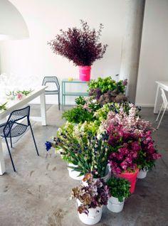 Send FIELDWORK FLOWERS Portland OR Florists Flower Shop & Nursery
