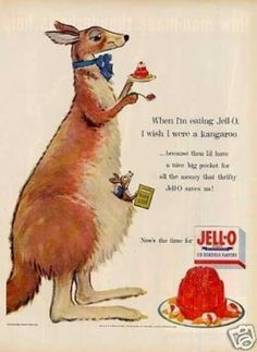 """Jello Ad (1954)  """"When I'm eating Jell-O, I wish I were a kangaroo--because then I'd have a nice big pocket for all the money that thrifty Jell-O saves me!"""""""