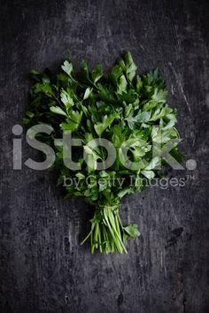 Vegetable series - Parsley royalty-free stock photo
