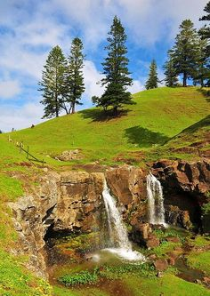 Cockpit Falls, Norfolk Island (with Norfolk Pines in the background), Australia (by Greg Earl Photography) The Beautiful Country, Beautiful World, Beautiful Places, Norfolk Island, Beautiful Islands, Australia Travel, Wonders Of The World, Tourism, Scenery