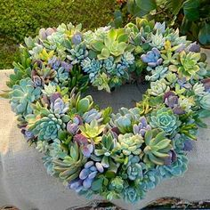 Could this be any prettier? Gorgeous succulent wreath from Dirt Couture.