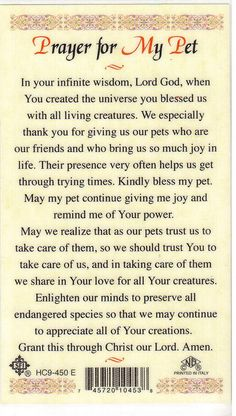 Found this in a local Catholic bookstore and had to buy it. I love all of our pets and always pray for them! Dog Quotes, Animal Quotes, Dog Poems, Pray Quotes, Faith Quotes, Qoutes, I Love Dogs, Puppy Love, Sick Cat