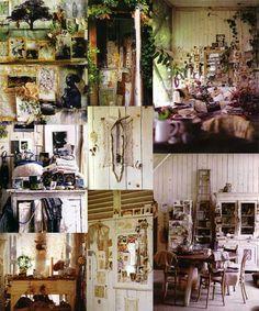 Ann Shore Interiors