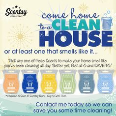 Want that freshly vkeaned smell without all the work?  Check out my website and order yours today!!