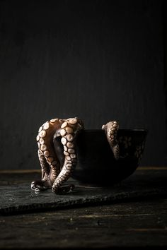 reganbaroni_octopus.jpg