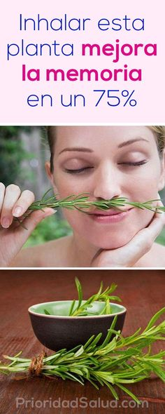 El romero: inhalar esta planta mejora la memoria en un 75%.