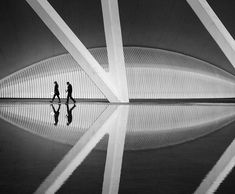 "Title ""Parallel World"" Valencia Spain Santiago Calatrava Architecture Fine Art Photography B&W Post Processing Nikon Zeiss Photography Workshops, Fine Art Photography, Valencia Spain, Santiago Calatrava, Vulture, Black And White Photography, World, Instagram Posts, Labs"