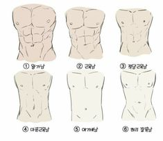 Hand Drawing Reference, Drawing Reference Poses, Anatomy Reference, Human Anatomy Drawing, Drawing Body Poses, Drawing Abs, Body Sketches, Art Drawings Sketches, How To Draw Abs