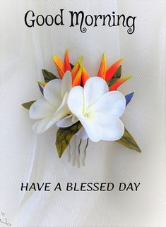 Good Morning For Her, Good Morning Monday Images, Good Morning Friends Images, Good Morning Beautiful Images, Good Morning Cards, Good Morning Prayer, Good Morning Funny, Morning Blessings, Good Morning Picture