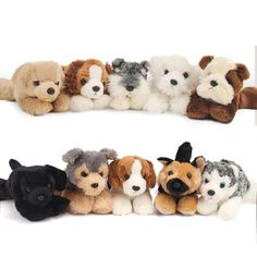Our selection of dog stuffed animals is second to none! We have you covered when it comes to Man's best plush friend. Shop by dog breed or browse our great collection today! Raining Cats And Dogs, Stuffed Animals, Dog Breeds, Dog Cat, Plush, Teddy Bear, Cookies, Cream, Toys
