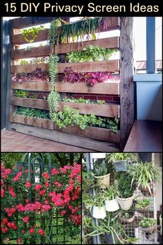 15 DIY Privacy Screen Ideas  Block out nosy neighbors and passersby with these creative privacy screen ideas.