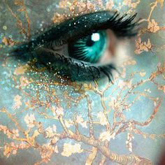 Beautiful Aqua Eye!