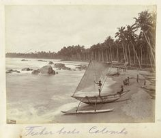 Anonymous | Lokale vis catamarans aan het strand van Colombo, Anonymous, c. 1890 - c. 1910 |