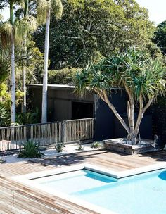 Backyard Pool Landscaping, Backyard Pool Designs, Pool Fence, Swimming Pools Backyard, Swimming Pool Designs, Garden Pool, Fence Around Pool, Lap Pools, Indoor Pools