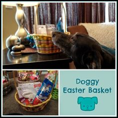 April's Homemaking: Easter and Spring Projects- doggy Easter basket
