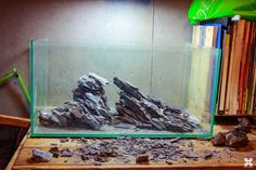 Hardscape by Obaron Aquatic LayoutI have so much to learn….
