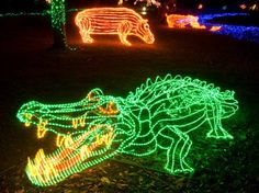 ZooLights | Oregon Zoo  $12.50 adult   3yrs and older $9.50  just the train - $3.50   5-8pm