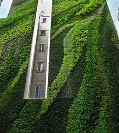 now that's green building