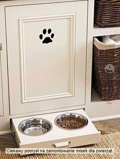 #kitchen #animal