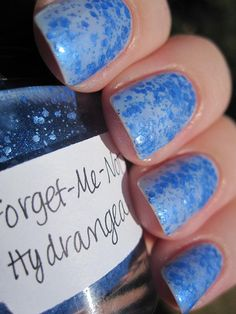 Lynnderella forget me not hydrangea    This is one coat over NYC's Little Italy ...