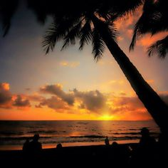 Palm Cove, Queesland (Photo by seeaustralia)