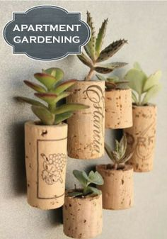 If you're short on space and time, here are 4 simple ways to rock your green thumb without breaking the bank!
