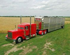 Sweet Red Pete Cattle Hauler