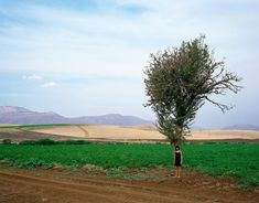 Website of Greek photographer Panos Kokkinias, containing his artwork, biography, texts, book and contact information.