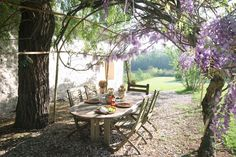 loVe this and the wisteria