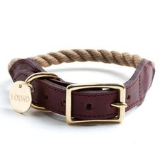a manly collar for a manly pup